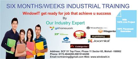 Windowit 6 weeks industrial training chandigarh.jpg