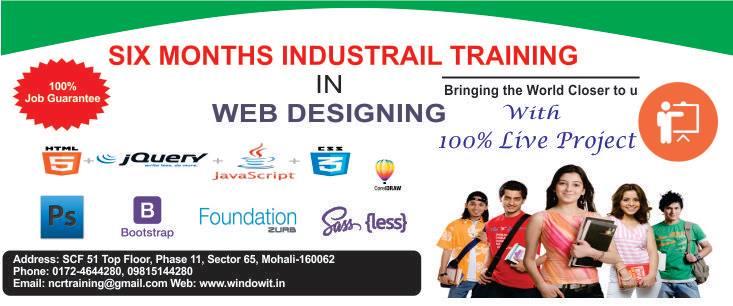 Windowit Web Designing Training in Chandigarh.jpg
