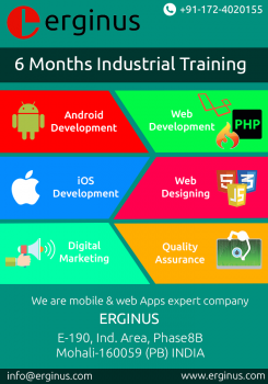 6 months industrial training comapnies in Mohali.png