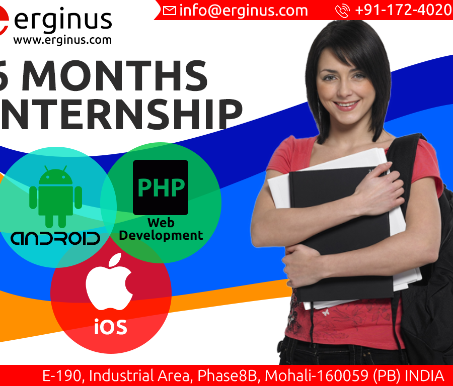 6 months internship program in Mohali It Company.png