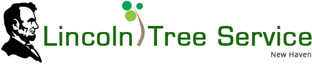 Lincoln Tree Service Logo.png